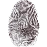 forensics resized 188