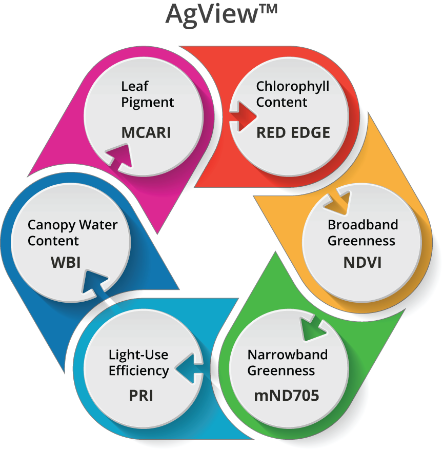 AgView-infographic